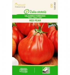 red pear Jau įpusėjo pomidorų sėjimo, pikavimo ir augimo reikalai :)